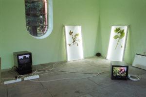 """""""Rouen Souvenir"""", Videoinstallation, 2005"""