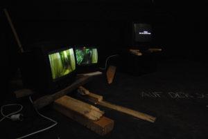 """""""Auf der Suche nach dem letzten Exemplar"""", Videoinstallation 2007/2010"""