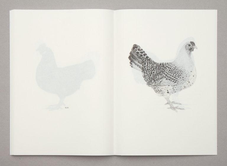 """Ulrike Paul, """"Sammlung Haushühner (Gallus gallus domesticus)"""""""