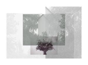 Carolin Rauen, Utopia-Natur